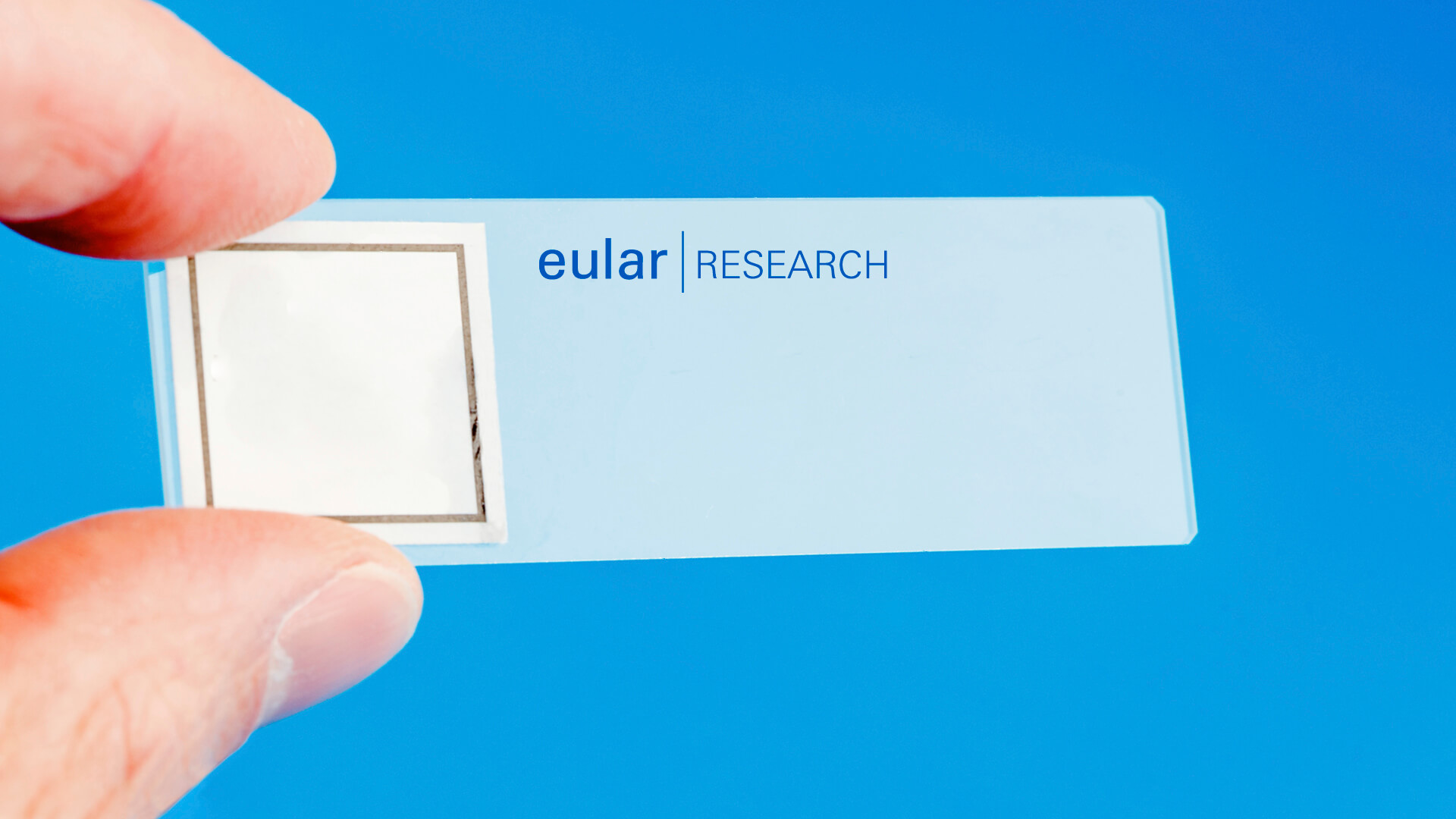 10_research_1_EULAR_strategy_slides_2021.jpg