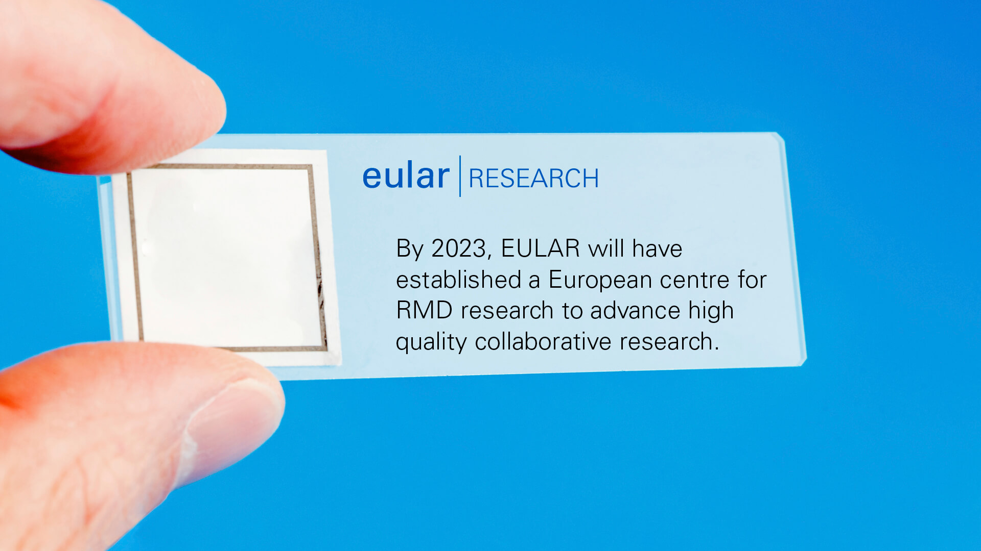 11_research_2_EULAR_strategy_slides_2021.jpg